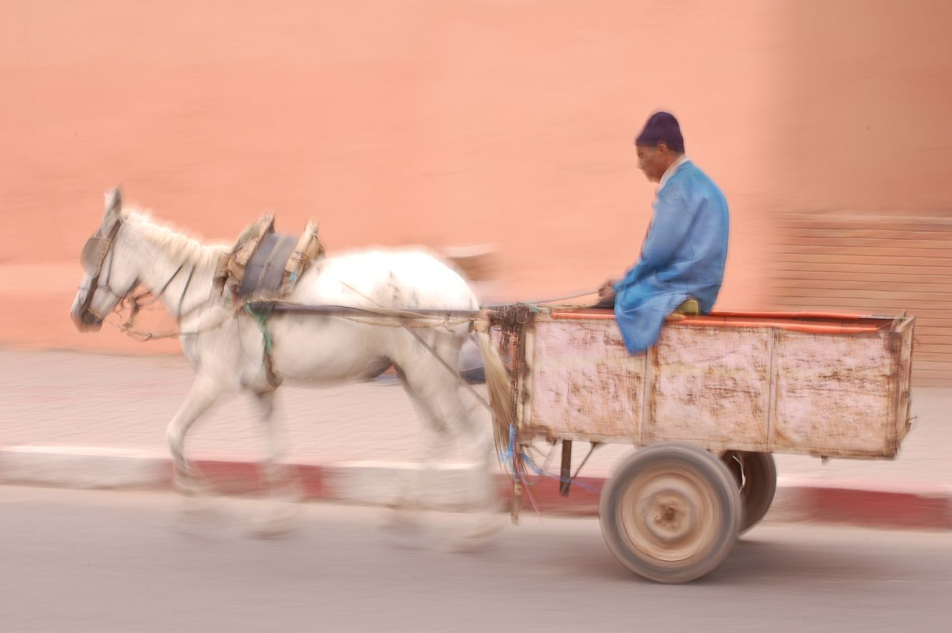 morocco_marrakech_horse_and_cart.jpg