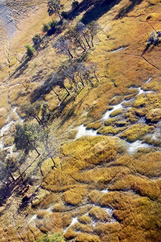 botswana_aerial_kesane.jpg
