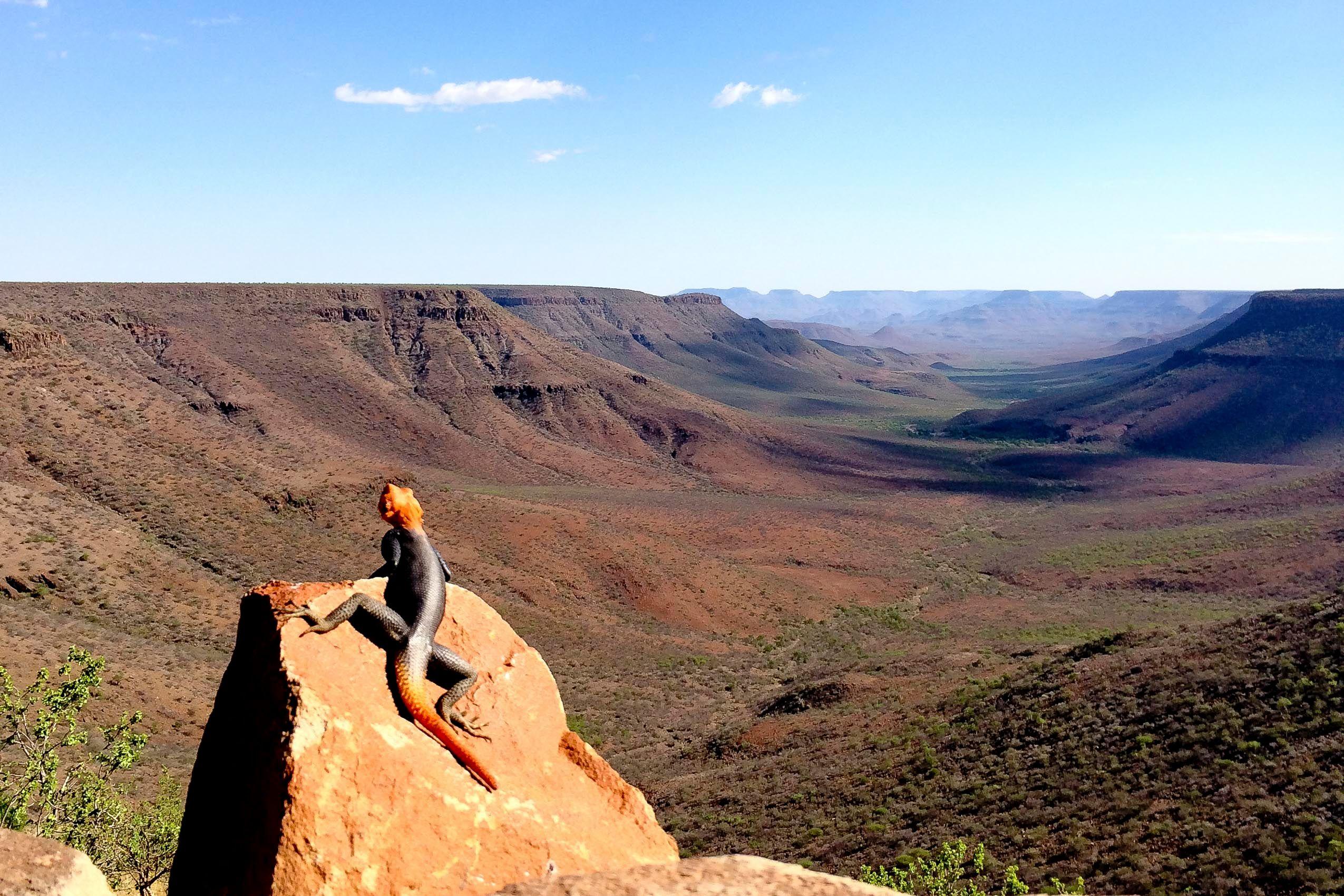 namibia_grootberg_lodge_damaraland_view.jpg