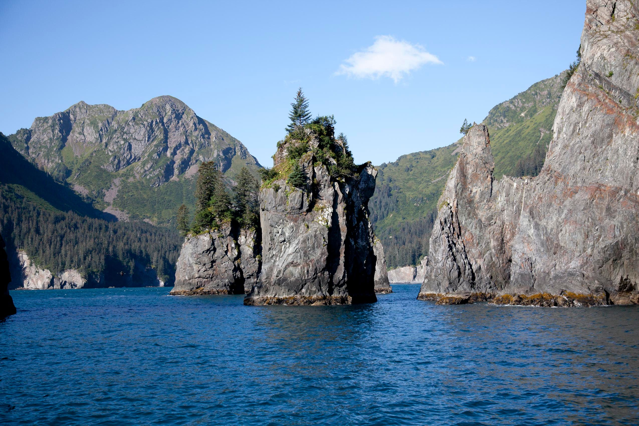 alaska_halibut_cove_boat_trip.jpg