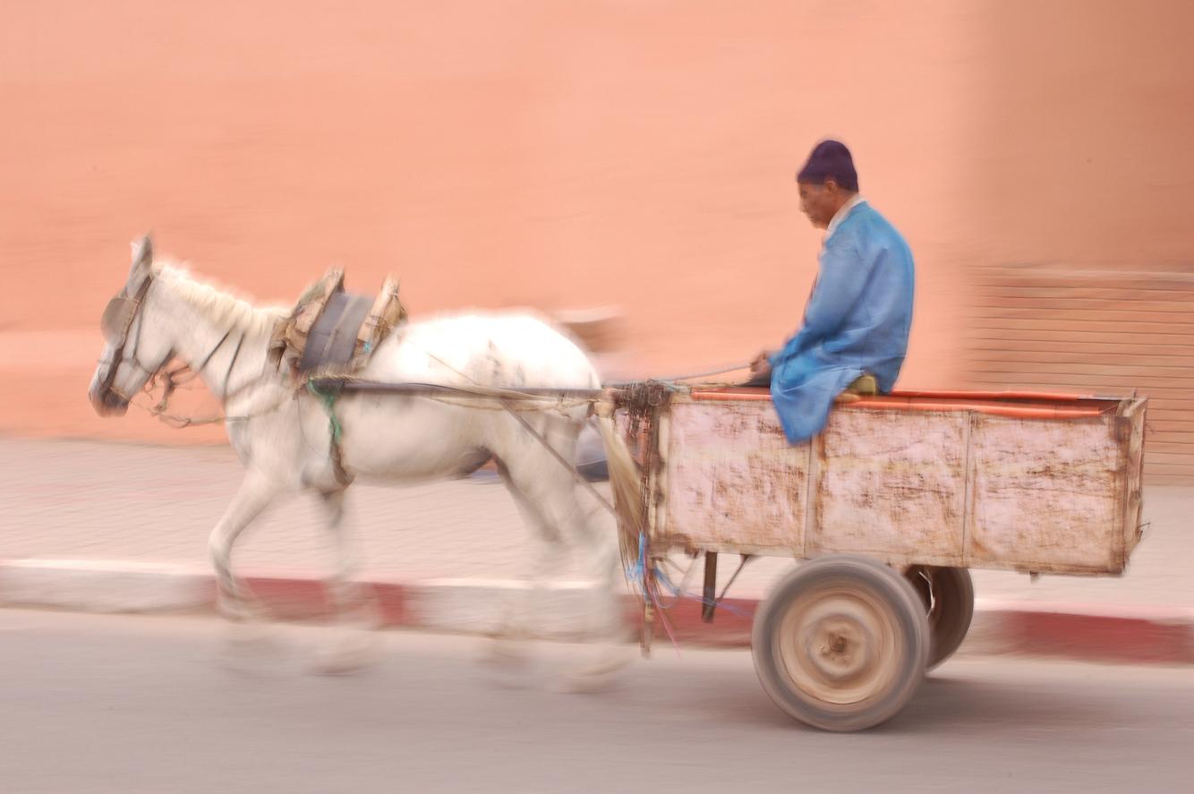morocco_marrakech_horse_and_cart.jpg