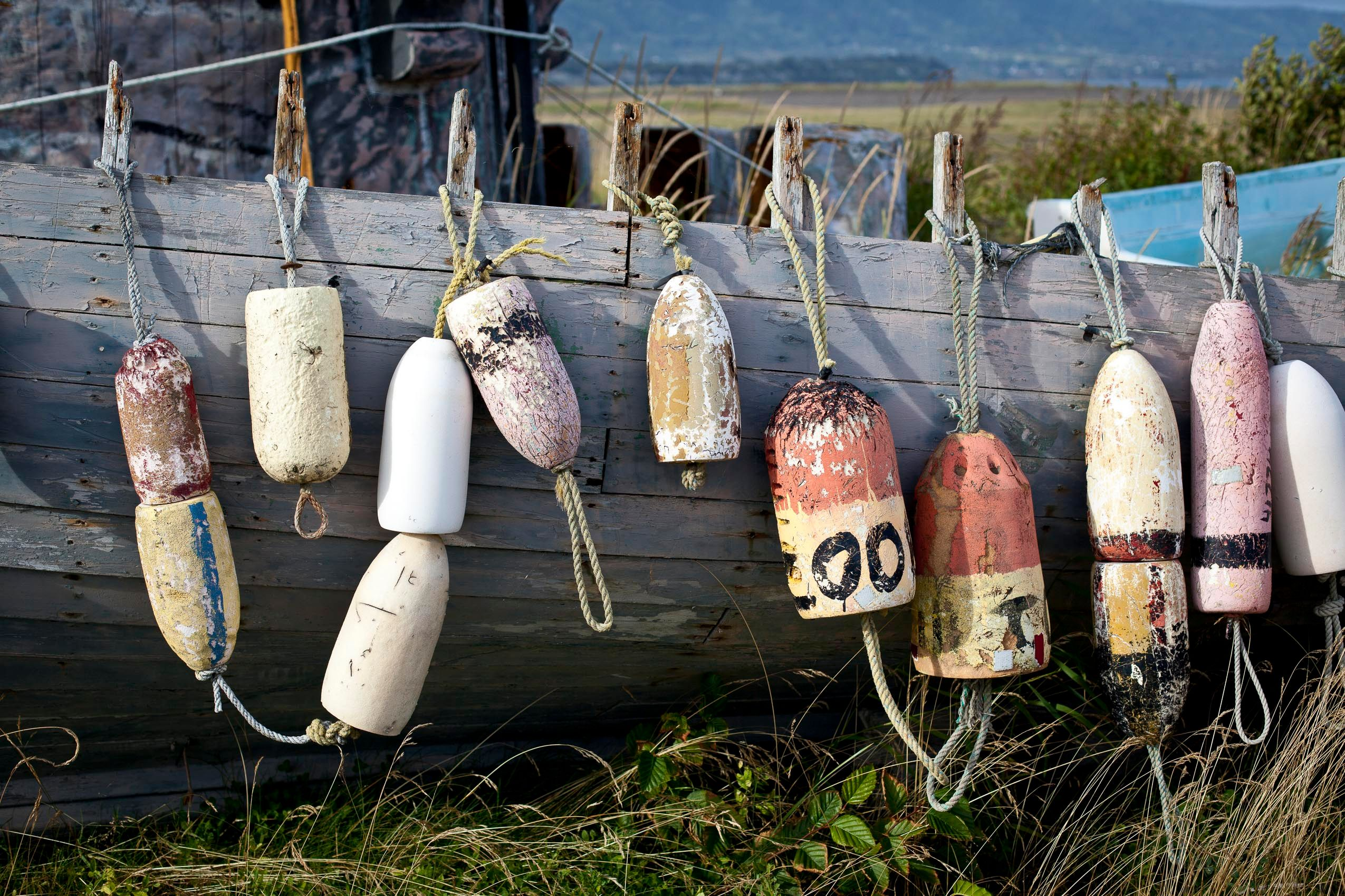 alaska_kenai_peninsula_buoys.jpg