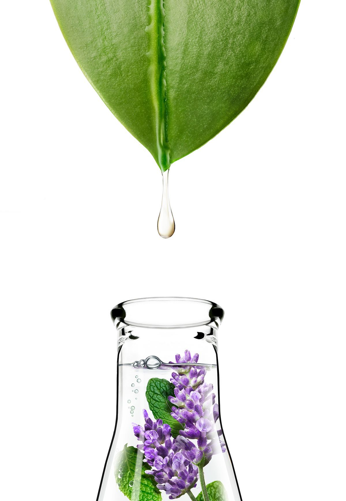 0585_Apothecare_Lavender_LongDrip_03_LOW.jpg