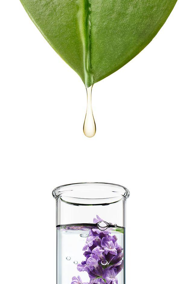 0585_Apothecare_Lavender_LongDrip_03c.jpg