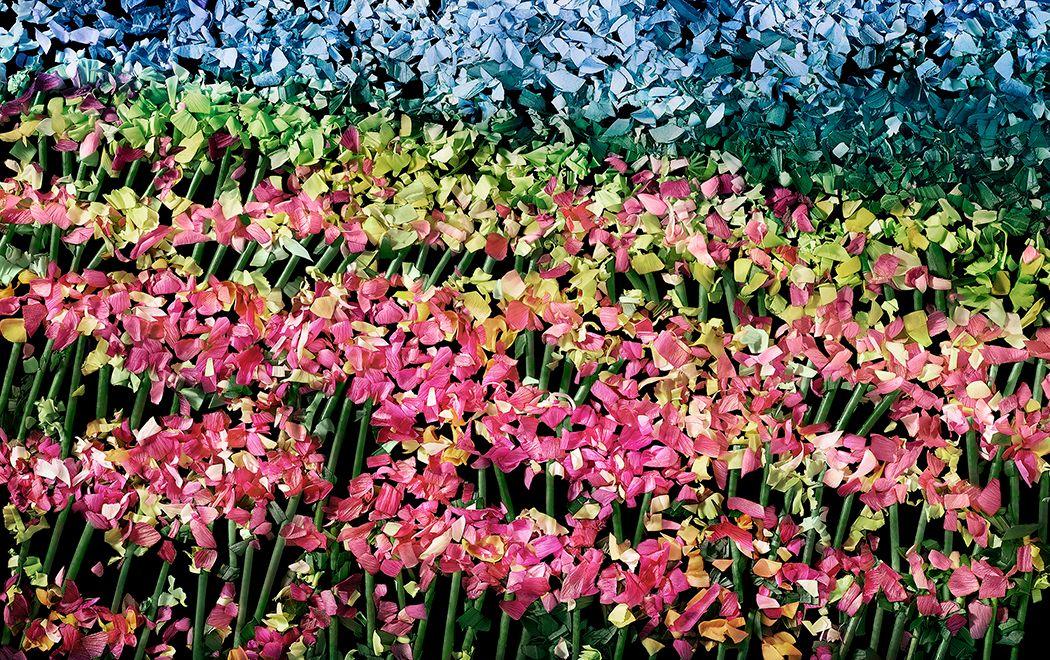 floral_deconstruction4122.jpg