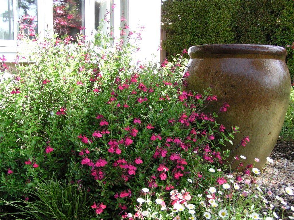 1bohrer_garden_1.jpg