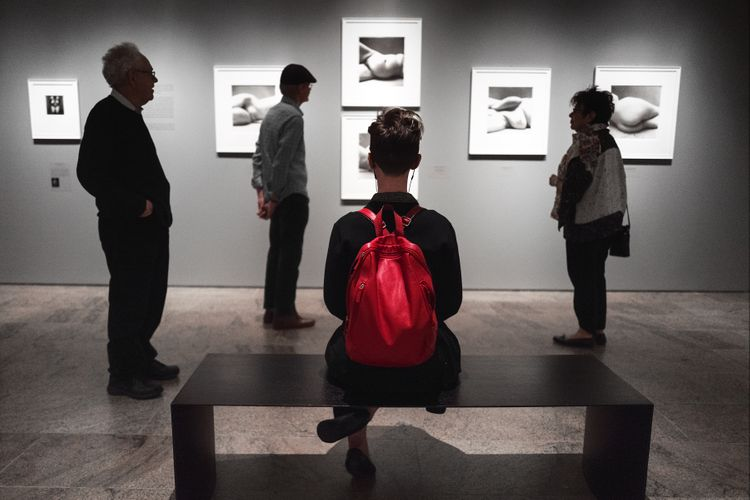 Irving Penn at the Met #1, NYC, 2017