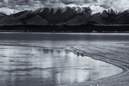Lake Pukaki Fishing