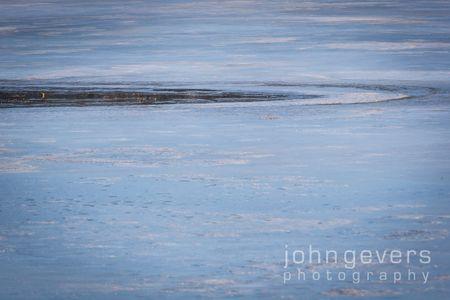 Eagle Marsh-1.1.2017-16