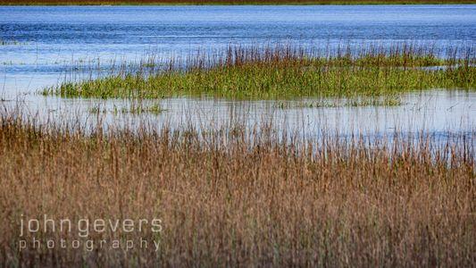 Marsh • Savannah Nature Refuge 529 • Georgia