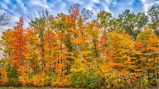 Indiana Autumn Blaze 4 • Fort Wayne, Indiana