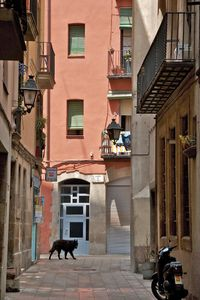 Gothic Quarter  •  Barcelona, Spain