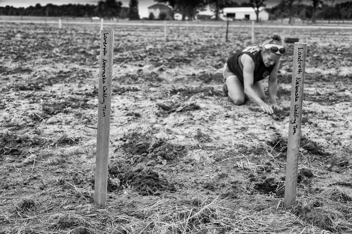 WoodFarmsProducePlanting2017-258-Edit.jpg