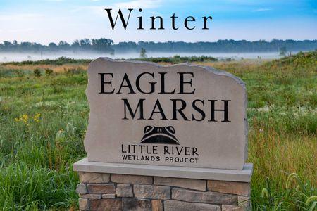 Eagle Marsh Winter