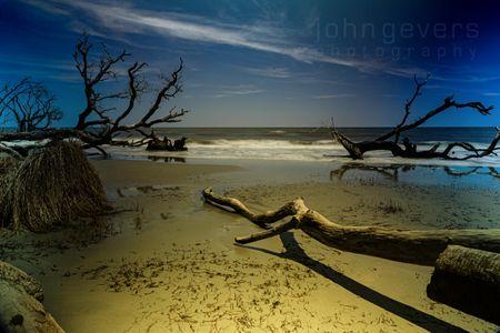 Boneyard Beach • Cape Romain 629 • South Carolina
