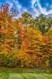 Indiana Autumn Blaze 3 • Fort Wayne, Indiana
