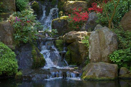 Tranquility • Portland, Oregon