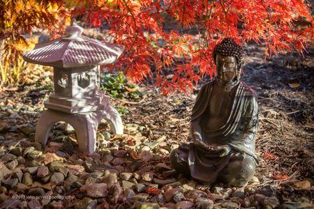 Buddha Serenity 4 • Fort Wayne, Indiana