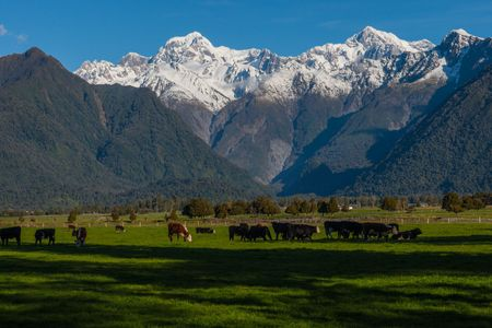 Southern Alps 1