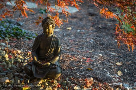 Buddha Serenity 3 • Fort Wayne, Indiana