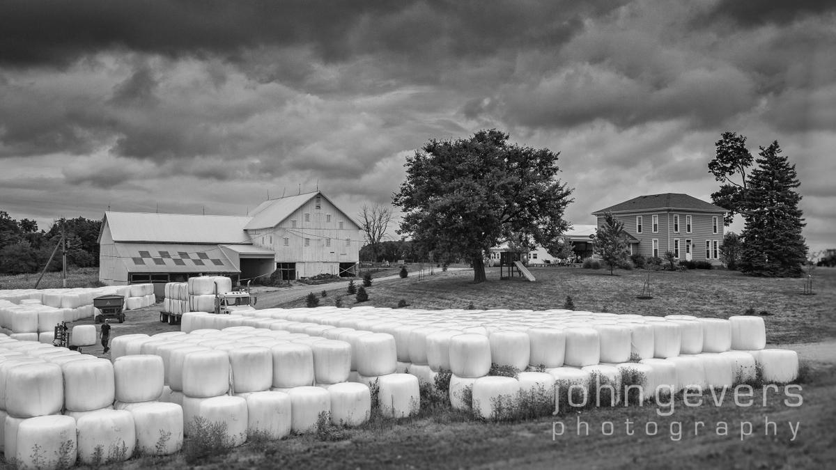 Wood Farms