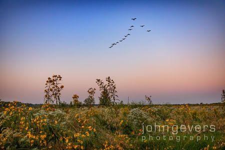 Eagle Marsh 9-19-21-1