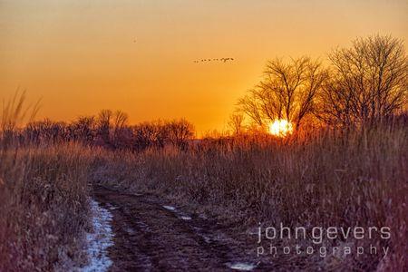 Eagle Marsh 1-1-20-119
