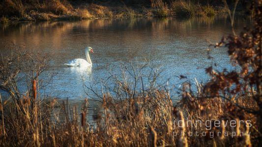 Eagle Marsh-12.3.17-24
