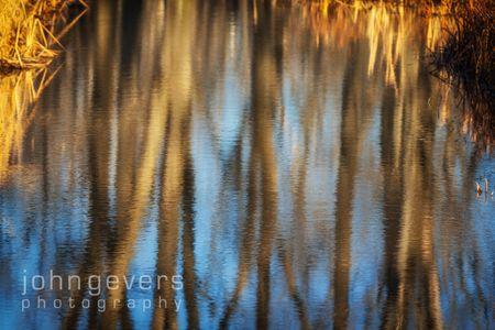 Eagle Marsh-12.3.17-16