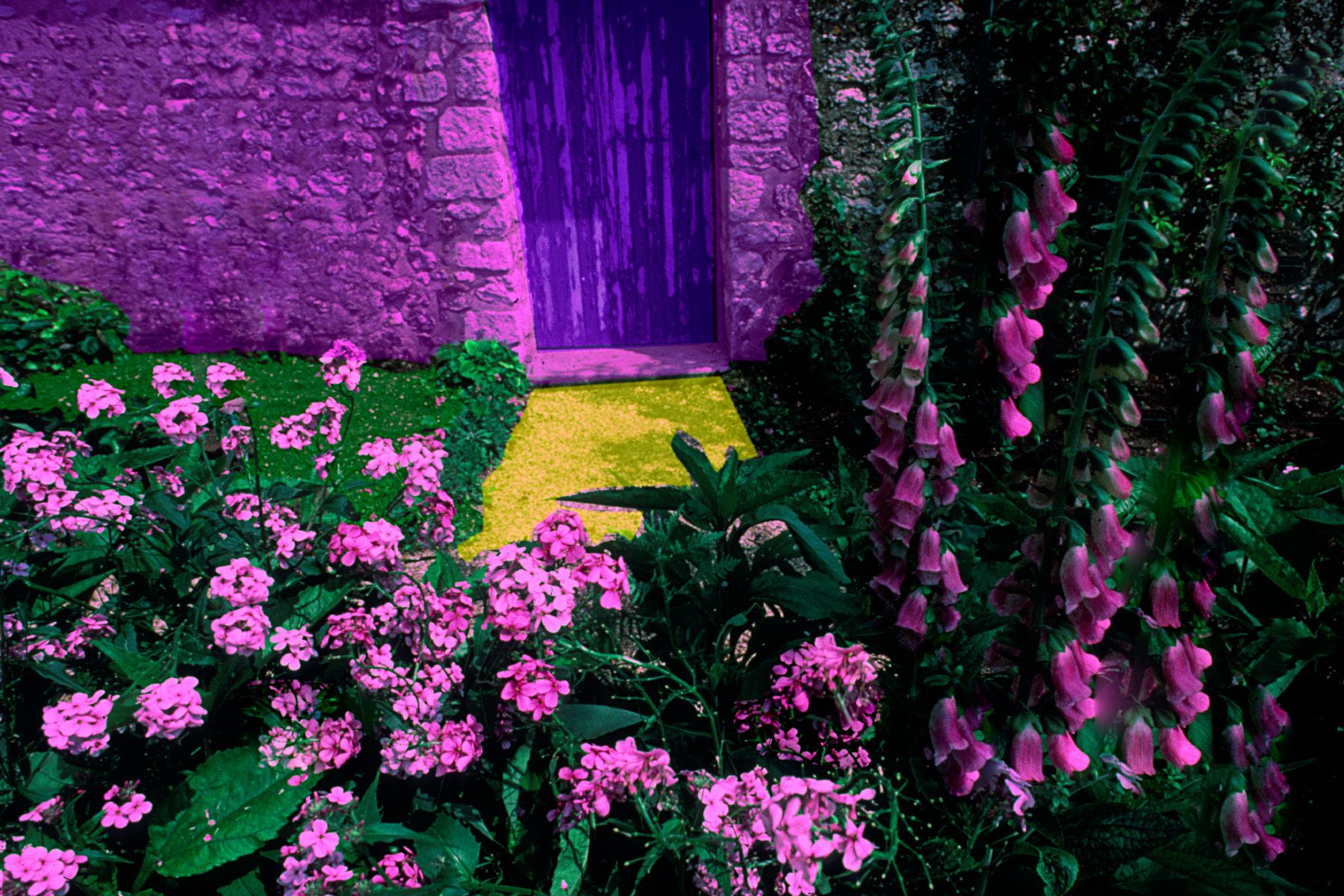 12_0_175_1m_gottlieb_monet_s_back_garden_gate.jpg