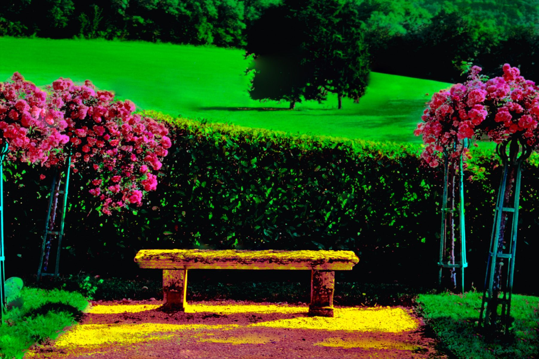 14_0_114_1i_gottlieb_french_bench.jpg