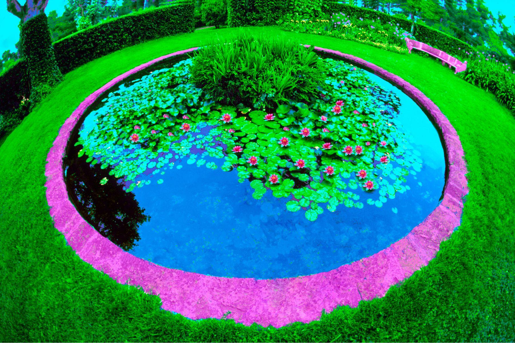 2_0_80_1f_gottlieb_lily_pond.jpg