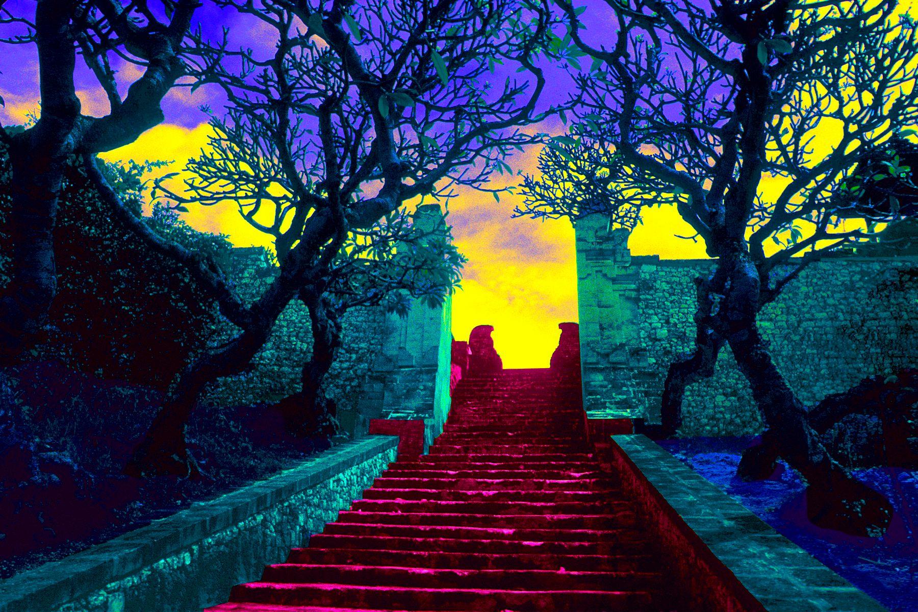 1_0_223_1gottlieb_bali_steps_ws.jpg