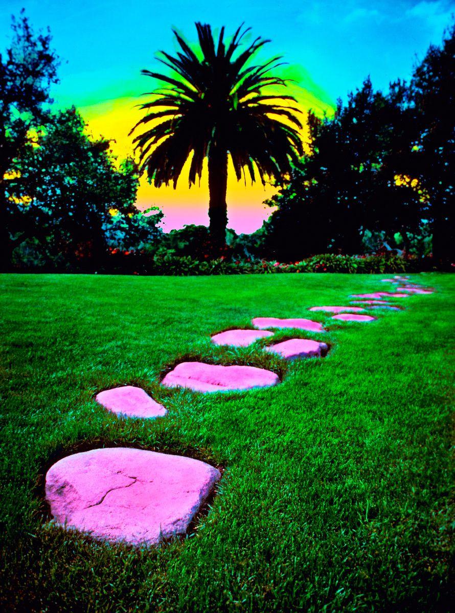 10_0_163_1l_gottlieb_stepping_stones.jpg