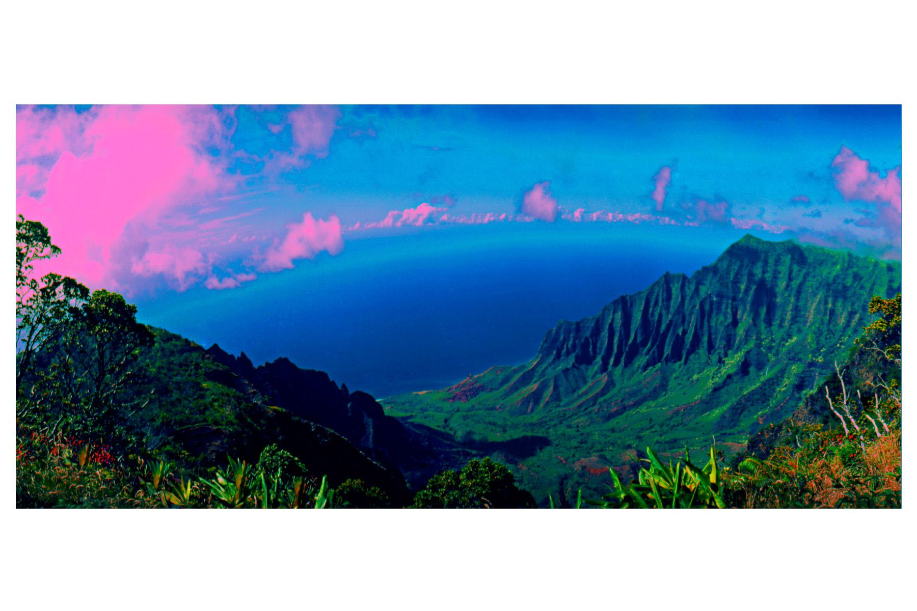 19_0_192_1p_gottlieb_hawaii.jpg