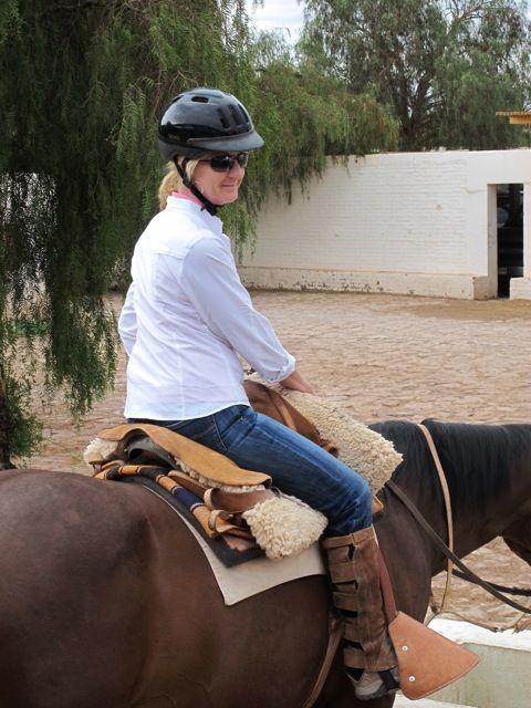 cindybiondi.horse_.jpg