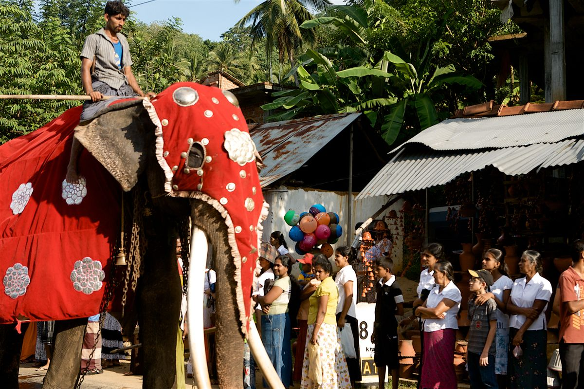 SRI LANKA day 1  9771.jpg