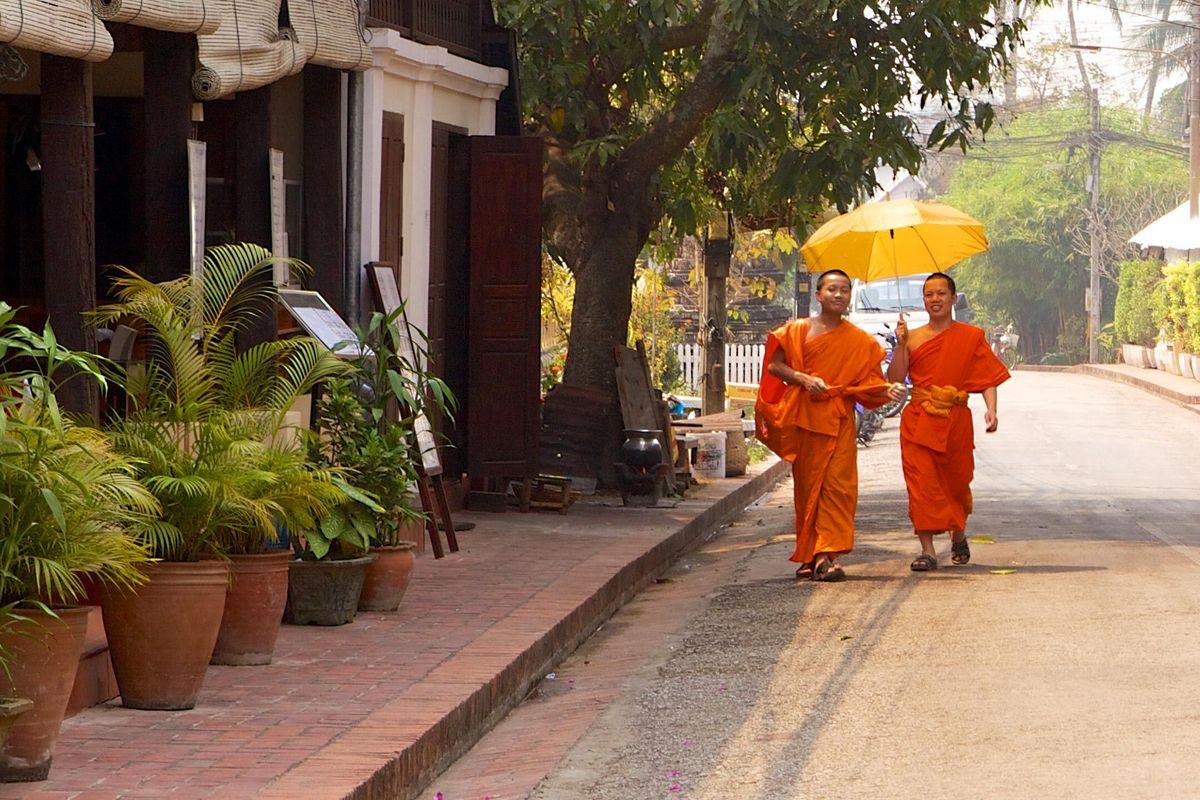 The Buddhist Monks of Luang Prabang