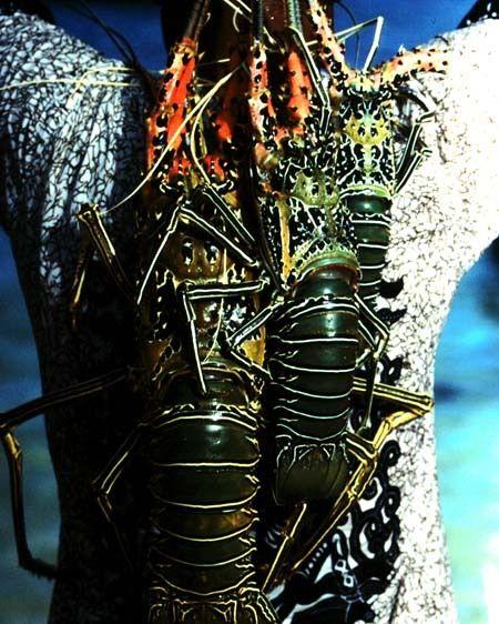 1FIJI_lobster_man.jpg