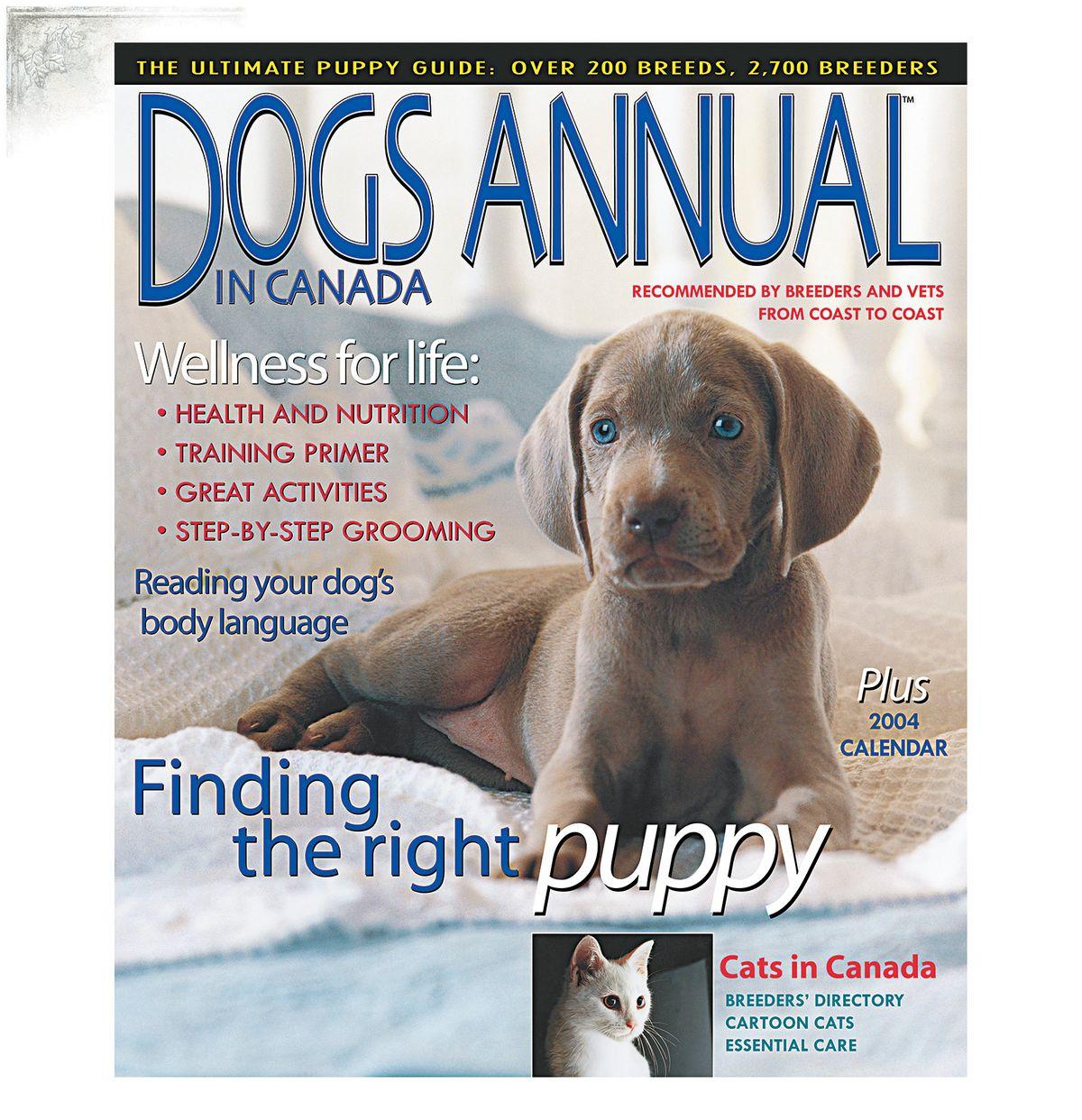 DogsAnnualCoverPortfPage.jpg