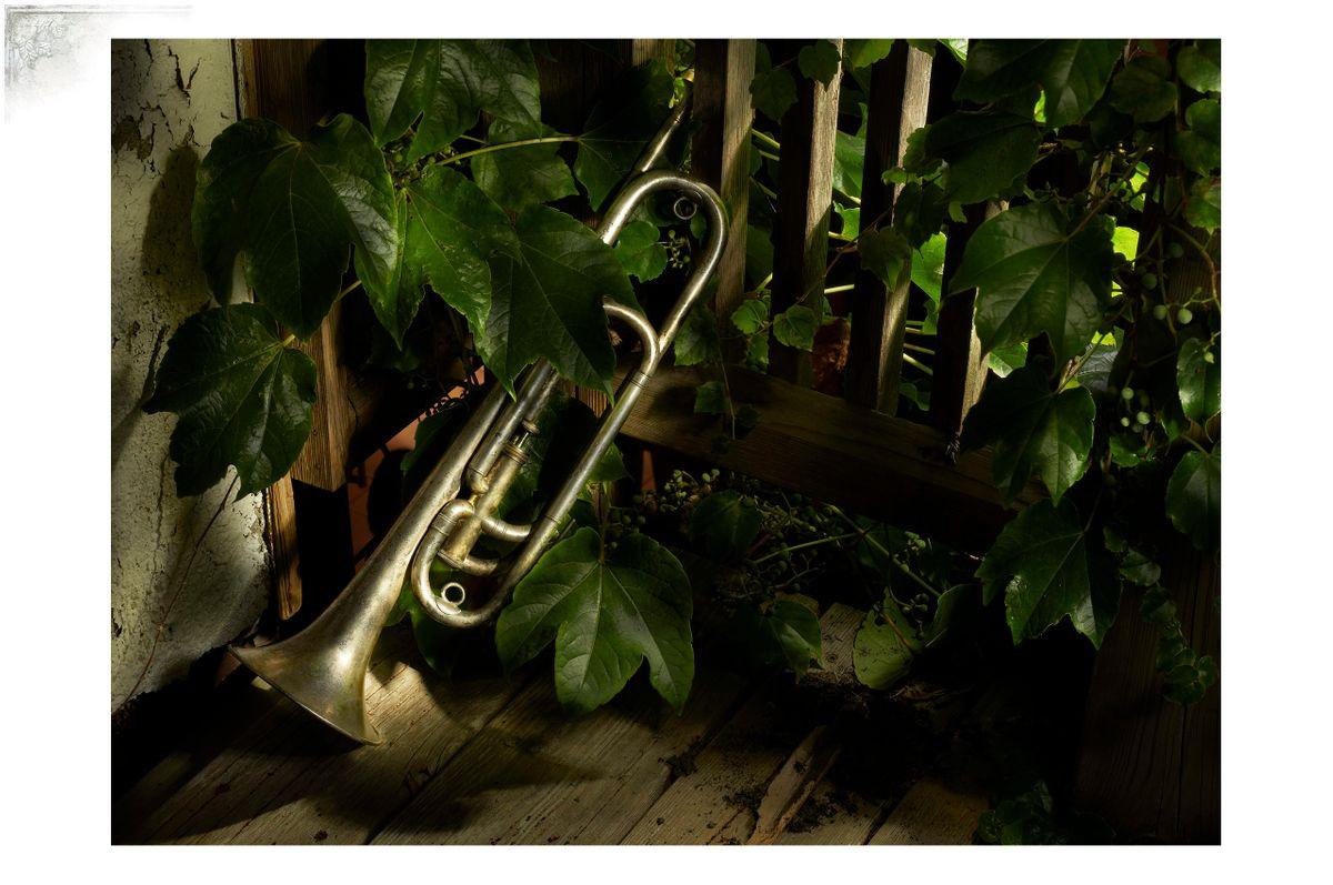 Cal-TrumpetPortfPage.jpg