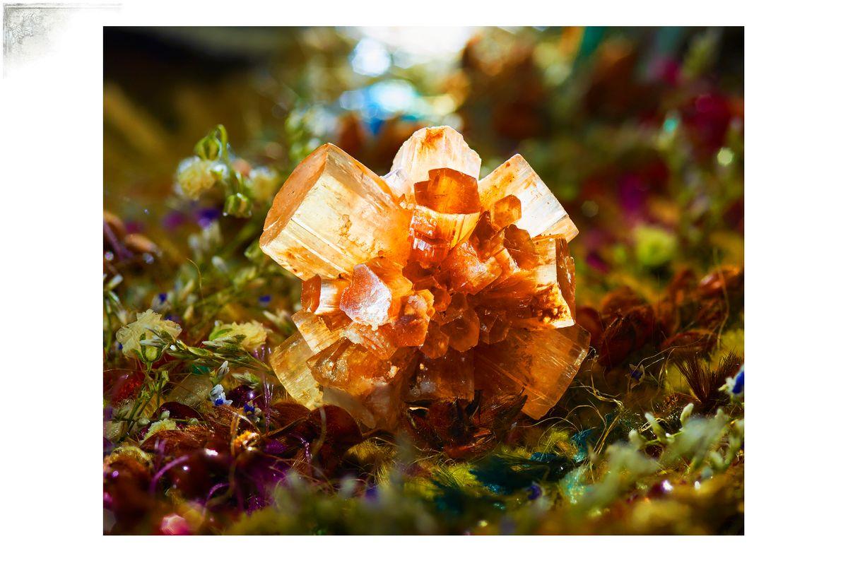 Cal-CrystalPortfPage.jpg