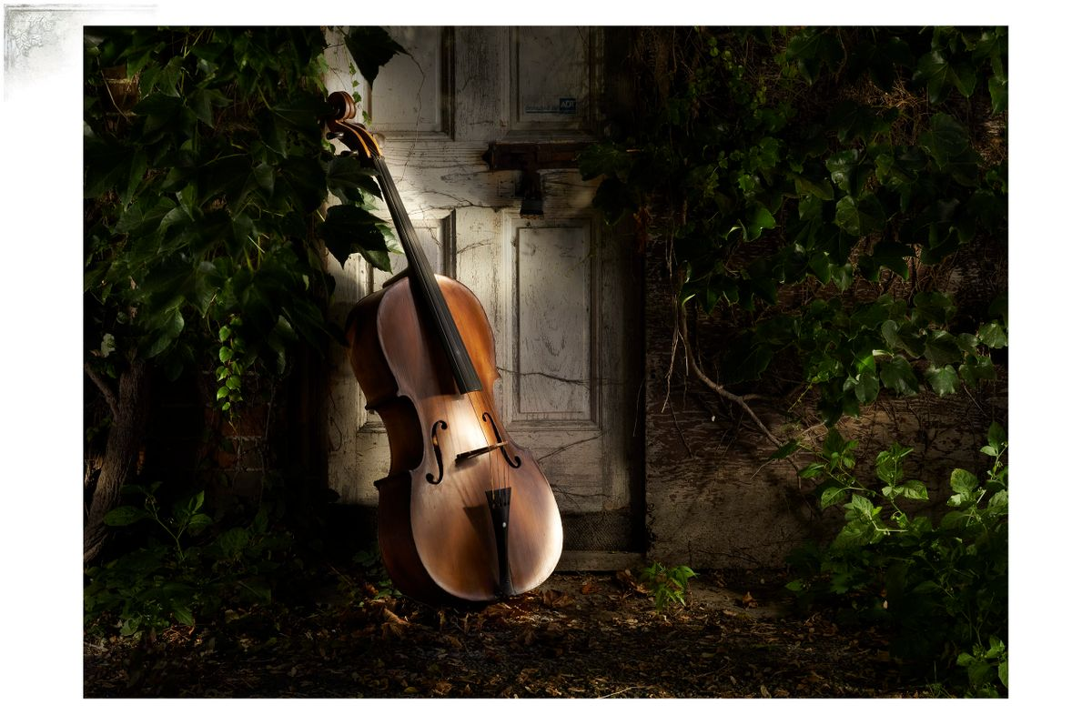 CelloPortfPage.jpg
