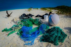 Midway Island Marine Debris Cleanup