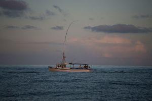 Big Eye Tuna fishing ini the Norfolk Canyon
