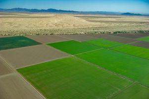 Desert meets Irrigated Desert near Mexicali