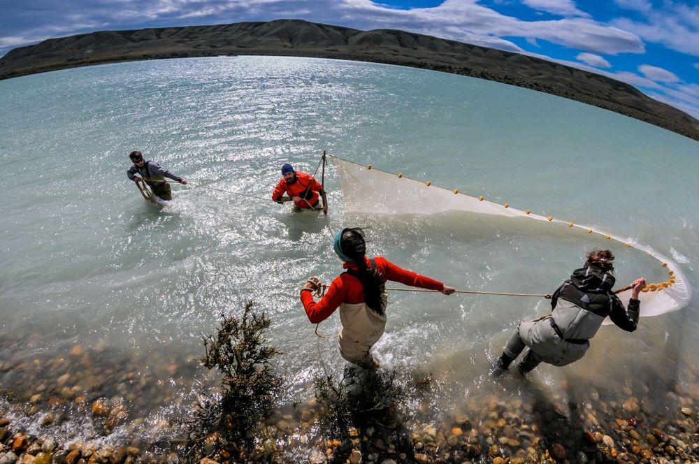 Rio Santa Cruz, Patagonia
