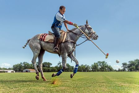 Denver Commercial Photographer Action Polo.jpg