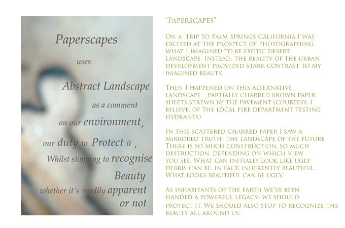 1paperscapes_opening_statement_copy