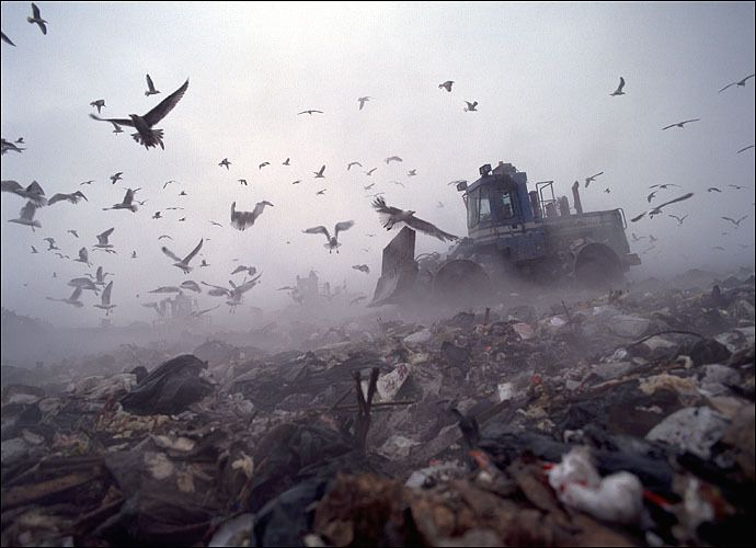 Steam rises from newly dumped garbage as a compactor levels out the refuse during dumping operations at Fresh Kills Landfill.